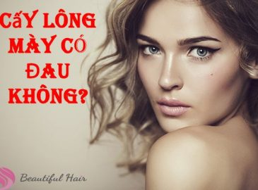 cay-long-may-co-dau-khong